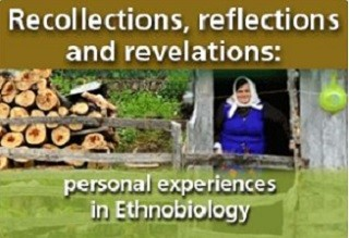 Recollection collection image new