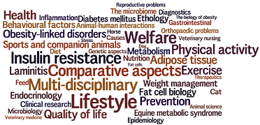 animal obesity wordcloud